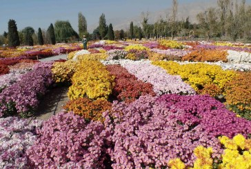 باغ موزه گیاه شناسی تهران