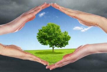 جمع بندی کلیه مقاله های محیط زیست – فصل اول
